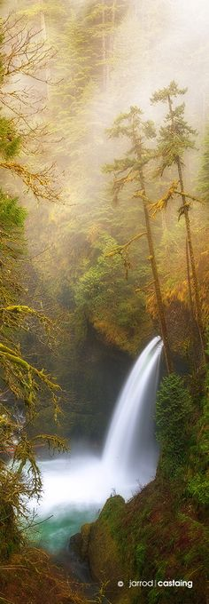 Metlako Falls, Eagle Creek, Columbia River Gorge, Oregon, USA Breathtaking Places Around the World All Nature, Amazing Nature, Nature Water, Beautiful Waterfalls, Beautiful Landscapes, Places Around The World, Around The Worlds, Beautiful World, Beautiful Places