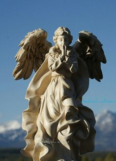 I always feel peaceful when looking at an Angel. Cemetery Angels, Cemetery Statues, Angel Statues, Cemetery Art, Angels Among Us, Angels And Demons, Statue Ange, Entertaining Angels, Sculptures