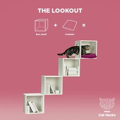 WHISKAS Cat Hack: The Lookout - Curious cats love high-up hideaways, so take feline furniture to new heights with this this easy-to-build library hideyhole. Then head to our profile for more handy how-to's.                                                                                                                                                                                 More