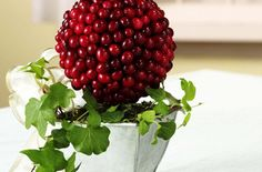 Ocean Spray Cranberry Topiary . Try this recipe now: http://www.oceanspray.com/Recipes/Corporate/Crafts/Cranberry-Topiary.aspx?courses=Crafts