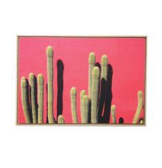 Wall Art - Cactus Pink Wall – FURNISH