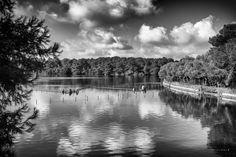 Alimini lakes by Fabrizio Arati, via 500px