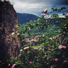 Rimetea / Rimetea e unul dintre cele mai frumoase sate din Transilvania. Sătenii spun că aici soarele răsare de două ori. Şi, într-un fel, e chiar aşa. Localitatea e mărginită de versanţi abrupţi, care creează impresia că soarele se ridică de două ori pe cer. La Rimetea trebuie neapărat să ajungi dacă îţi plac escaladările şi sporturile aeronautice, pentru că - datorită felului în care e aşezată - Rimetea e destinaţia ideală pentru zborul cu parapanta, off the road şi drumeţii. Iar dacă…