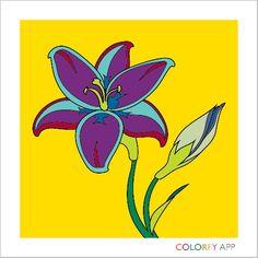 Color a flower