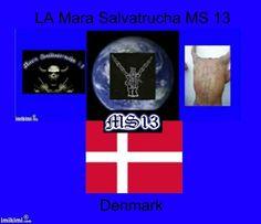 Ms-13 desiplin ære og respekt