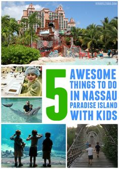 5 Things To Do In Nassau Bahamas With Kids!