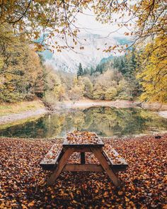 Beautiful autumn place..