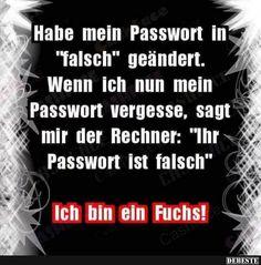 Habe main Passwort in 'falsch' geändert. True Words, Funny Cute, Quotations, Laughter, Funny Jokes, Haha, Lyrics, Funny Pictures, Wisdom