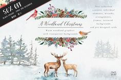 *Affiliate Link A Woodland Christmas - Graphic set ~ Illustrations ~ Creative Market - Washy watercolours depict a wintery yet warm woodland scene. Curious animals live amongst the fir trees, foliage and berries, creating a magical Christmas backdrop. Adobe Illustrator, Freelance Illustrator, Watercolor Background, Watercolor And Ink, Watercolor Paintings, Watercolor Texture, Texture Web, Paper Texture, Woodland Christmas