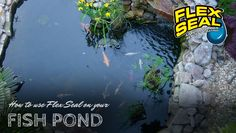Pond Meet Your Match Flex Seal Colors A Handyman Such As Yourself Takes