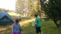 Lacrosse at Yellowstone Lake campground