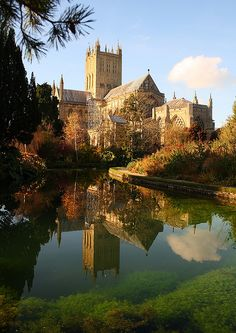 """Wells Cathedral: Elizabeth Goudge was born here and set several books, including """"City of Bells"""" here"""
