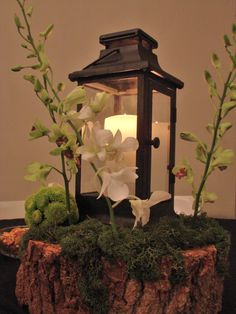 Enchanted Forest Centerpiece
