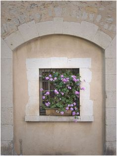 Images of Provence > Window Box