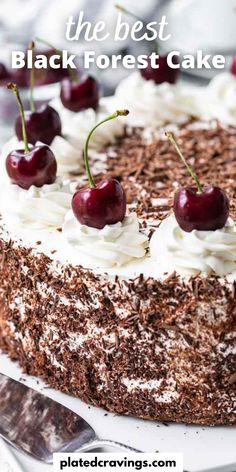 Black Forest Cake is a traditional German dessert made with chocolate sponge cake layers filled with whipped cream and cherries. This delicious cake recipe is completely made from scratch and perfect for special occasions! Cake Recipes From Scratch, Easy Cake Recipes, Dessert Recipes, Chocolate Cherry Cake Recipe From Scratch, Black Forest Cherry Cake Recipe, Black Forest Cake Recipe From Scratch, Traditional German Desserts, Traditional Black Forest Cake Recipe, Recipes
