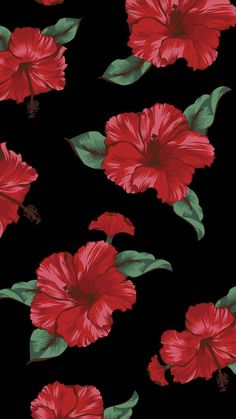 Most recent Totally Free Hibiscus fondos Suggestions Hibiscus plants are tropical beauties that offers a very beautiful look for your garden. These are d fondos Free Hibiscus Suggestions Totally 687784174328348436 Flor Iphone Wallpaper, Trendy Wallpaper, New Wallpaper, Wallpaper Backgrounds, Wallpaper Plants, Phone Backgrounds, Ios Wallpapers, Pretty Wallpapers, Hibiscus Drawing
