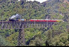 Net Photo: 794 Feilding & Districts Steam Rail Society Steam at Near Taihape, New Zealand by John Russell South Pacific, Pacific Ocean, State Of Arizona, Steam Locomotive, Train Station, Golden Gate Bridge, New Zealand, Euro, Trains