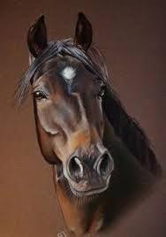 Resultado de imagem para pinturas de cavalos em tela
