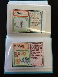 Love this idea for a vocabulary photo album. This is just an inexpensive dollar-store photo album and would make a great project for any content area!