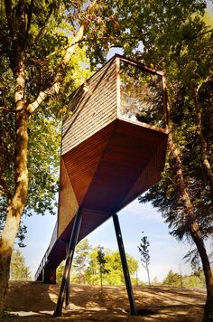 """Like a wild animal in its natural habitat, the house suddenly appears in the visual field of the observer."" Tree Snake Houses / Luís Rebelo de Andrade + Tiago Rebelo de Andrade."