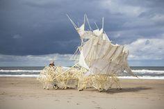 De expositie Ex Vitro verkent het raakvlak tussen kunst en wetenschap. Eregast Theo Jansen neemt zijn strandbeesten mee, een levensvorm uit pvc die zelfstandig…