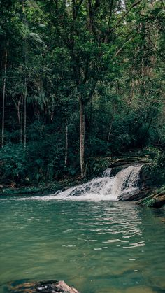 Fundo de tela da Cachoeira do Landi, na trilha do Vale. Conheça mais sobre esse passeio imperdível em Pirenópolis-GO, acesse o link!   #cachoeiradoabade #pirenopolis#dicasdepasseios