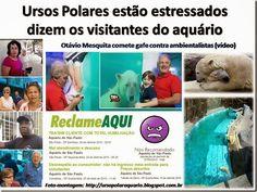 Mural Animal: Ursos Polares estão estressados dizem os visitantes do Aquário de São Paulo