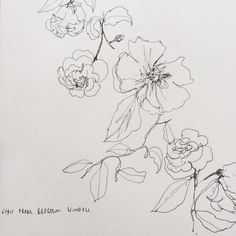 I love these delicate hand-sketched flowers and I like that the outline is thin and not thick.