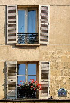 Boîte de fenêtre (window box)