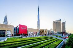 10 Things to Know Before You Go to Dubai
