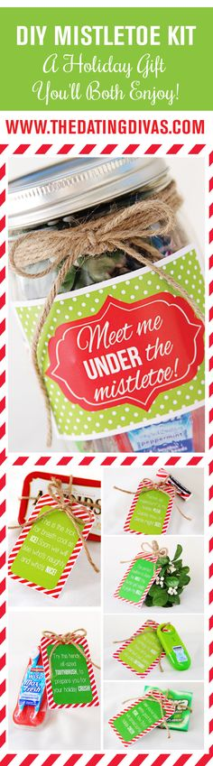 DIY Mistletoe kit! I