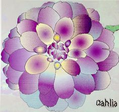 Illustrated Dahlia