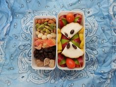 raw vegan fruitarian lunchbox