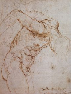 Raphael. Study of a man hanging by his arms c. 1505/1506. Pen and brown ink.