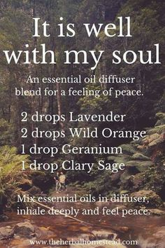 It is Well with My Soul diffuser essential oil blend. More information regarding the use of CPTG Essential Oils can be found at www. Essential Oil Diffuser Blends, Doterra Essential Oils, Natural Essential Oils, Doterra Diffuser, Doterra Blends, Essential Oils For Anxiety, Diffuser Recipes, Perfume, Aromatherapy Oils