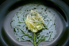Puré de patata y parmesan con brotes de alfalfa sobre lecho de espinaca