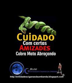 Frases Com Imagens Festa De Cobras Pesquisa Google Frases Fake