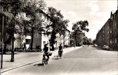 Postcard Niederrad Frankfurt Main, Niederräder Landstraße, Fahrradfahrer