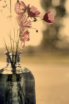 Bring the precious beauty of nature indoors with mismatched jars and wildflowers! ~Poppies in a Bottle~