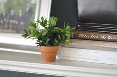 tutorial: make your own mini potted plants with a faux leaf/flower garland...cute for home decor, table settings or paint with chalkboard paint to use as placecards or food labels on a buffet