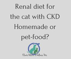 Renal diet for the cat What diet was more proper for my cat? a renal diet pet food with reduced protein intake or a raw meat diet with added supplements