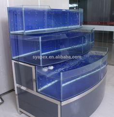 10 Tips on Designing a Freshwater Nature Aquarium Aquarium Shop, Aquarium Terrarium, Diy Aquarium, Tropical Aquarium, Aquarium Design, Planted Aquarium, Tropical Fish, Saltwater Tank, Saltwater Aquarium
