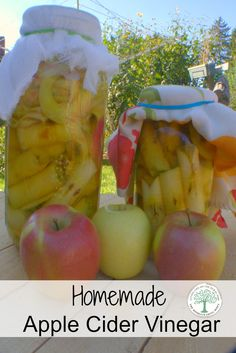 Apple Cider Vinegar has wonderful health benefits, as well as many beauty uses.  Learn to make your own easily~The HomesteadingHippy via @homesteadhippy
