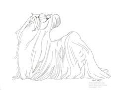 shih tzu super coloring shih tzu art pinterest - Shih Tzu Coloring Pages