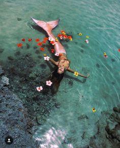 Fantasy Mermaids, Unicorns And Mermaids, Real Mermaids, Mermaids And Mermen, Mermaid Photo Shoot, Mermaid Pictures, Mermaid Cove, Mermaid Art, Mermaid Paintings