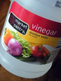 A million uses for vinegar......for cleaning, for pets, for everything! Who knew it was so great?!