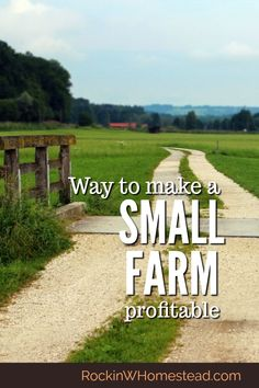 Many people with a pioneering spirit are looking for ways to live on their land and make their small farm profitable. You can #makemoney on your #homestead #smallfarm