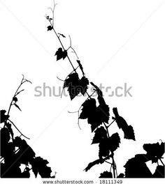 Grape leaf silhouette vector. See similar pictures in my portfolio. by gasa, via Shutterstock