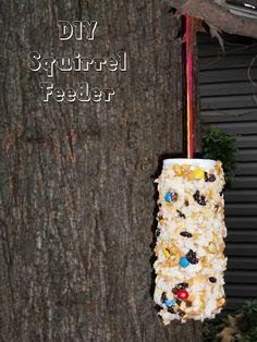 the peanut gallery - squirrel feeder Chipmunk Food, Squirrel Food, Baby Squirrel, Bird Food, Squirrel Feeder Diy, Bird Feeders, Can Dogs Eat, Outdoor Projects, Outdoor Decor