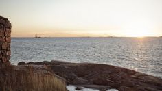 Kestävä kehitys kytkeytyi maailmanperintökohde Suomenlinnaa hallinnoivan Suomenlinnan hoitokunnan toimintaan. Toimin usean vuoden ajan ympäristötyöryhmässä, jonka yhtenä saavutuksena oli WWF Green Office -ympäristöjärjestelmän käyttöönotto hoitokunnassa.